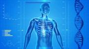Tus huesos: vitaminas, minerales y sanos alimentos para su salud