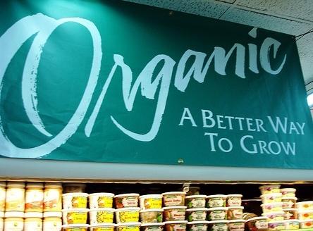 Reducción del IVA en los alimentos ecológicos