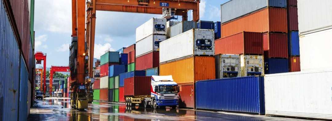 container fumigacao dedetização
