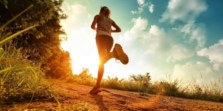 享「瘦」怎麼吃?酵素、益生菌幫助代謝 排便更順暢