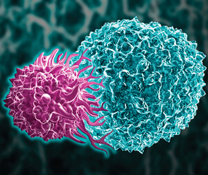 CAR-T免疫細胞療法「殺手」重要 「輔助」更重要