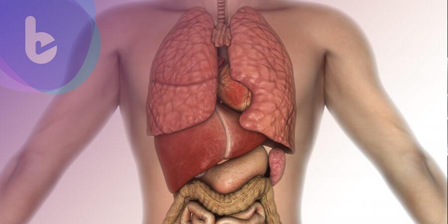 選對C肝口服新藥 讓治療安全性更高