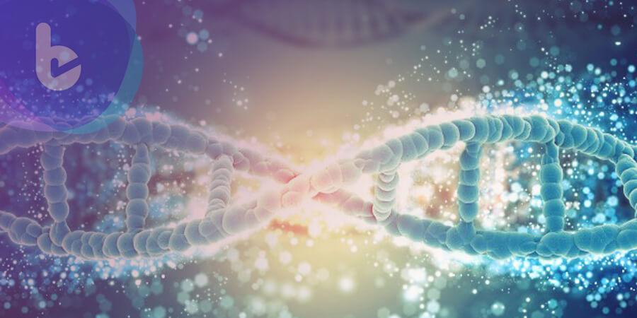 孕媽咪們都應了解   非侵入性胎兒染色體基因檢測NIFTY PLUS