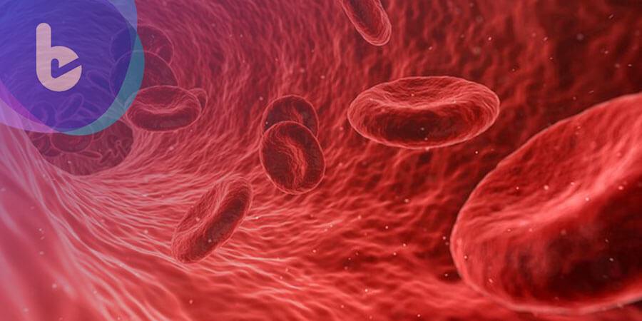 幹細胞醫學新進展,有望生產個人化血液解決供給問題