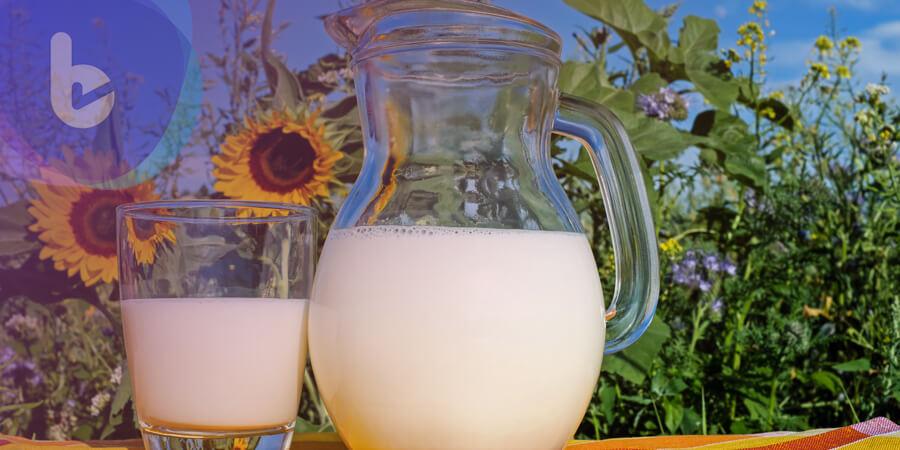 奶粉成分爸媽知多少? 慎選產品為孩子健康把關