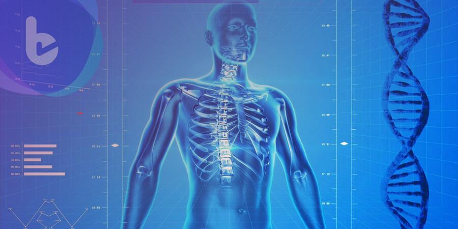 2018生醫年會發表健康老化概念  3D虛擬解剖桌結合醫療新科技