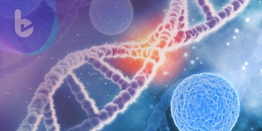 PI5P4K基因為提供癌細胞營養的關鍵蛋白?!