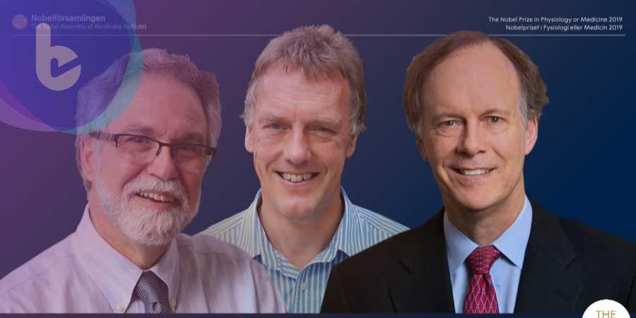 2019諾貝爾生醫獎 英美三位學者共同獲獎