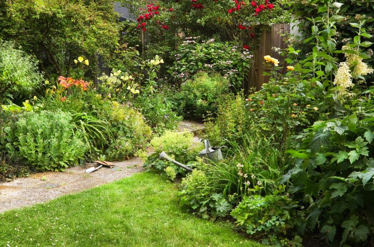 Le jardinage dans l'eco habitat