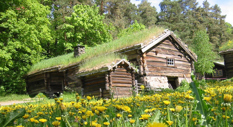 12 Things You NEED To Go Off Grid NOW Bio Prepper