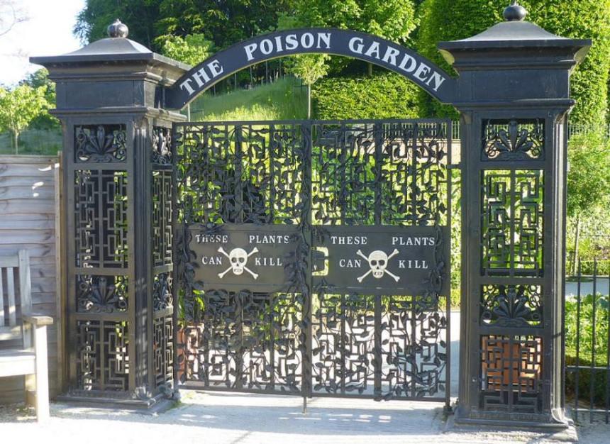 Al di là del cancello il giardino dei veleni.