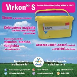 Scheda Prodotto Virkon S