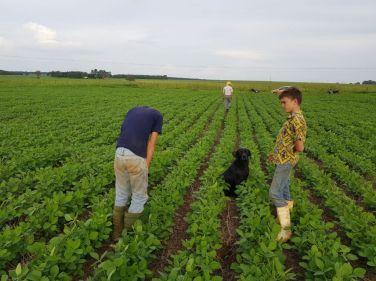 6Programa de agricultura familiar da Cargill