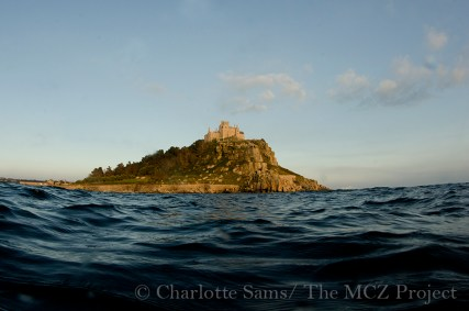 St Michael's Mount lies within the Mounts bay zone, it's conservation status will be determined early 2015. Charlotte Sams