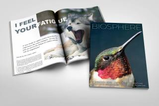 1-bio-cover-spread