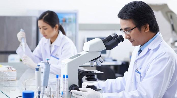 BSc Life Sciences Research Vacancies @ NIMHANS