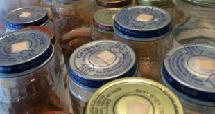 Plant Tissue Culture Materials Can be From Repurposed