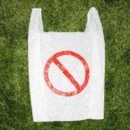 Ο ρόλος του περιβαλλοντικού τέλους για την πλαστική σακούλα μεταφοράς