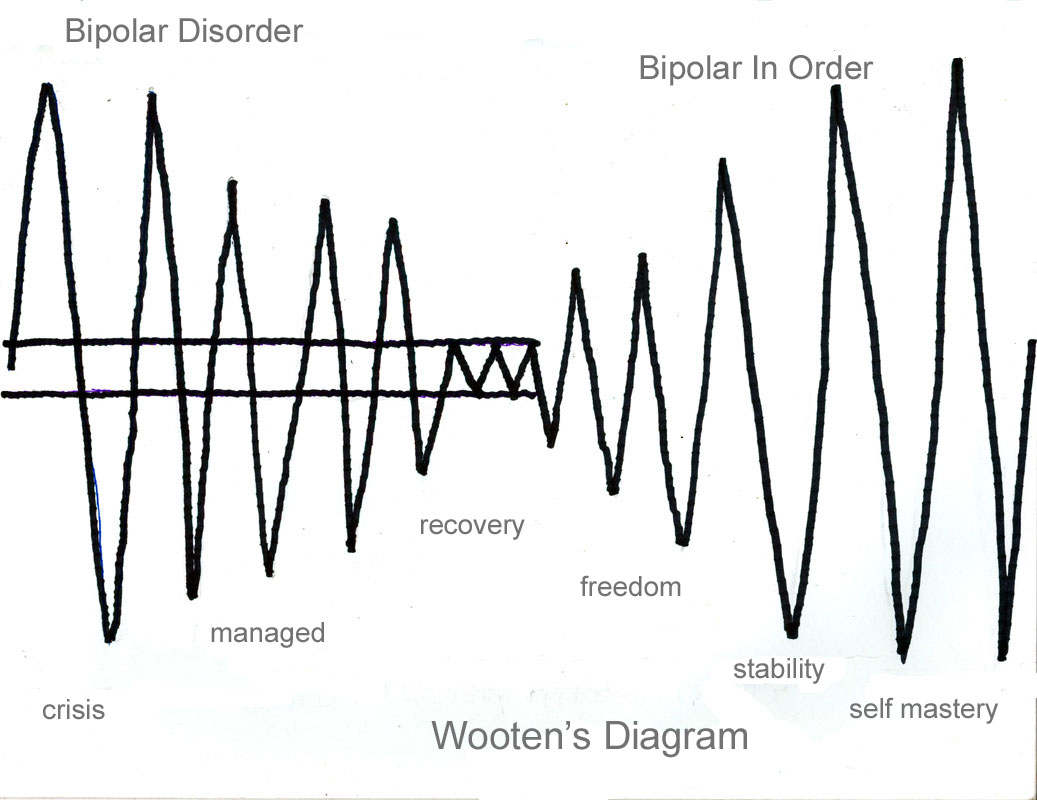 Bipolar Charts Template Workbook