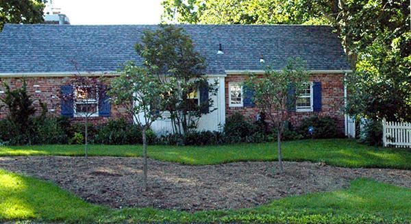 2005-May-sideyard-tilled