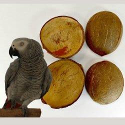 Coconut Stuff