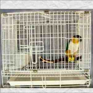 Fold Away Travel Cage Carrier for Smaller Parrots #601 19x12x15