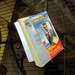 Free Bird Toy – Phone Books