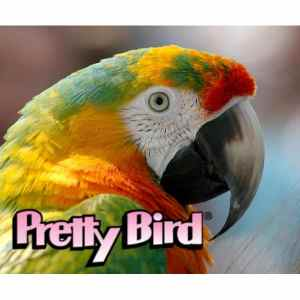 Pretty Bird A complete line of extruded foods to satisfy even the fussiest bird.