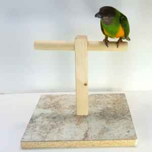 The purpose of parrot & bird play stands