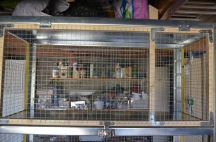 cage repro 6