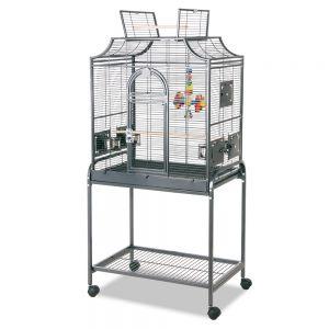 cage Montana Madeira I