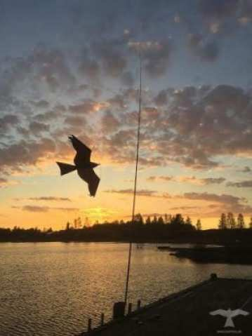 Fågelskrämma drake monterad på brygga vid Tilbble bystuga i Leksand