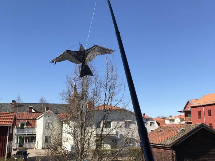 Fågelskrämma monterad på balkong i Leksand
