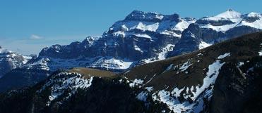 Birding in the high Pyrenees of Aragon