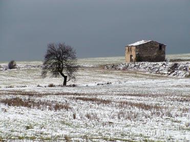 Snow on the Bellmunt drylands
