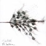 "Tim Kuhl - ""St. Helena"""