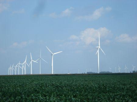 Chicago Jazz Fest - Windmills