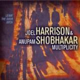 "Joel Harrison - ""Multiplicity"""