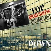 """Brad Shepik - """"Top Down"""""""