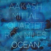 aakash-mittal-ocean