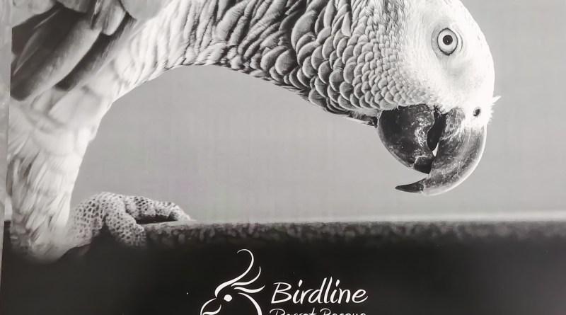 Birdline Canada 2018 Calendar