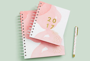 De jolis agendas pour 2017