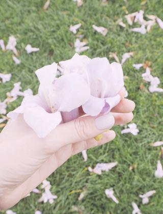 Couleur Lavande: Vernis Lavender Cream de Mavala
