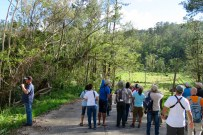 Birding along the road at Topes de Collantes Nature Reserve Park (photo by Lisa Sorenson)