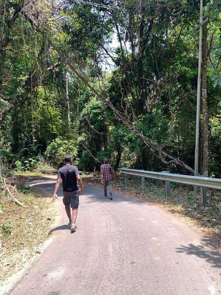 Inside Mount Harriet National Park in Andaman Island