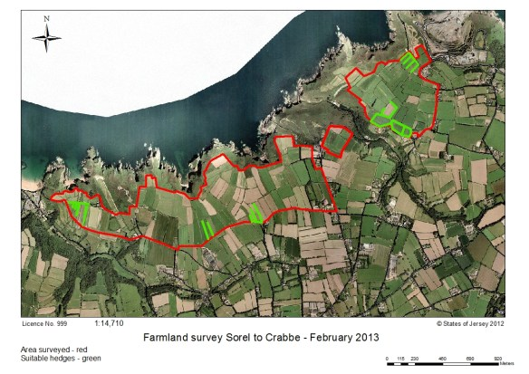 Survey area and location of suitable hedges for birds. States of Jersey map