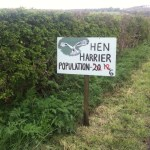 Hen harrier sign. Photo courtesy of RSPB Skydancer