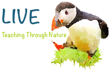 LIVE. Teaching Through Nature
