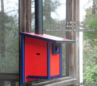 Free Bluebird House Plans Keeps Nestlings Cool bluebird bird house plans