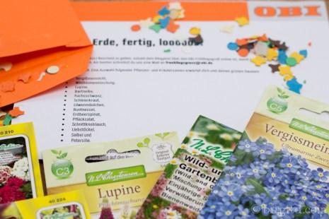 Garten im April und OBI-Saat-Geschenke